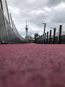 sky tower, pink road, auckland